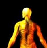 A medida que los músculos y ligamentos que soportan el útero se expanden, algunas mujeres sienten dolores en el abdomen o la ingle