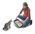 Gatos: El gato reproduce en el intestino al parásito  y es expulsado  en forma de ooquiste (o huevecillo)  en las heces fecales, generalmente en su caja de arena o bien en la tierra del jardín. El ooquiste madura y en un término de 24 hrs