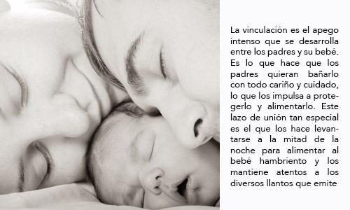 El primer lazo o vínculo de unión con tu bebé