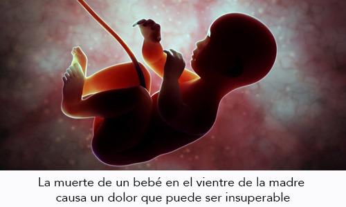 Muerte del Feto durante el embarazo