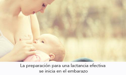 Preparación de los senos para la lactancia