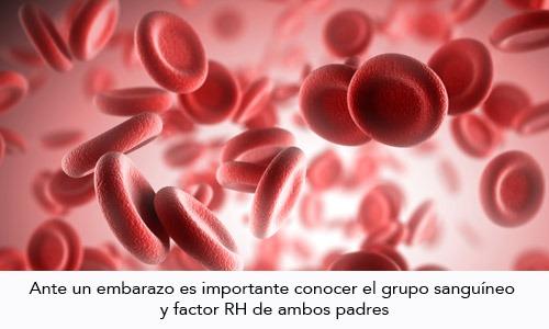 Incompatibilidad de Rh Enfermedad de la sangre en mujeres con Rh negativo