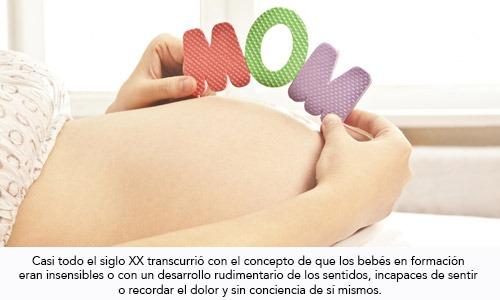 Sensibilidad y comunicación feto materna