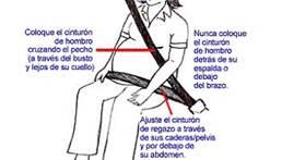 Utilizar siempre el cinturón de seguridad, preferentemente el de tres puntas