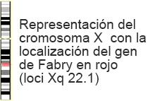01fabry